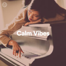 Calm Vibes (Playlist)