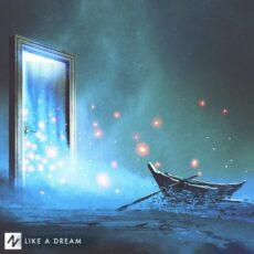 Approaching Nirvana Like a Dream