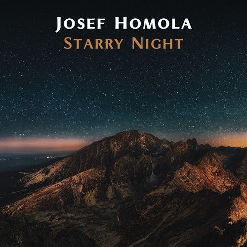 Josef Homola Starry Night