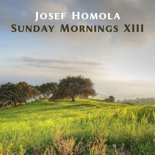 Josef Homola Sunday Mornings XIII