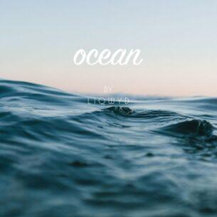 LiQWYD Ocean