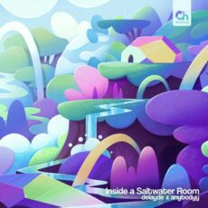 anybodyy, Delayde - Inside a Saltwater Room