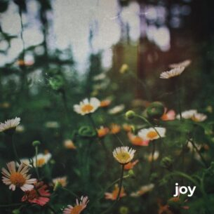 Morninglightmusic Joy