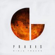 NINJA TRACKS Praxis