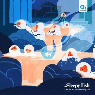 Sleepy Fish Like the Sky, or Something Else