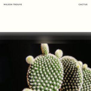 Wilson Trouvé Cactus